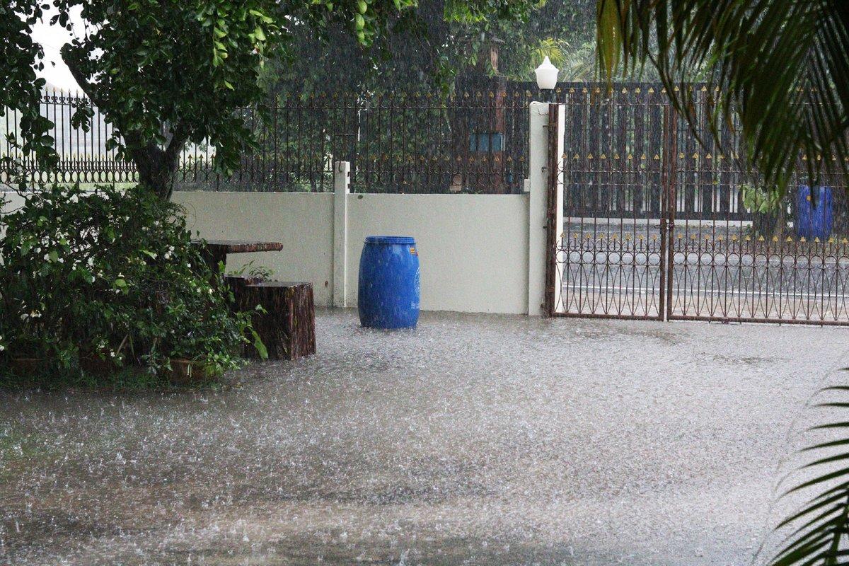 April showers s.jpg